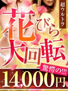 ママらんど宮崎店|花びら/14000円